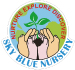 educational institutions & services from THE SKY BLUE NURSERY