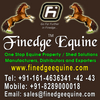 decorative vinyl flooring from FINEDGE EQUINE