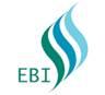 HAND TOOLS from EBI FZCO-UAE. WORKSHOP MACHINES & LAB EQUIPMENT